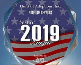 2019 Best of Tampa Award